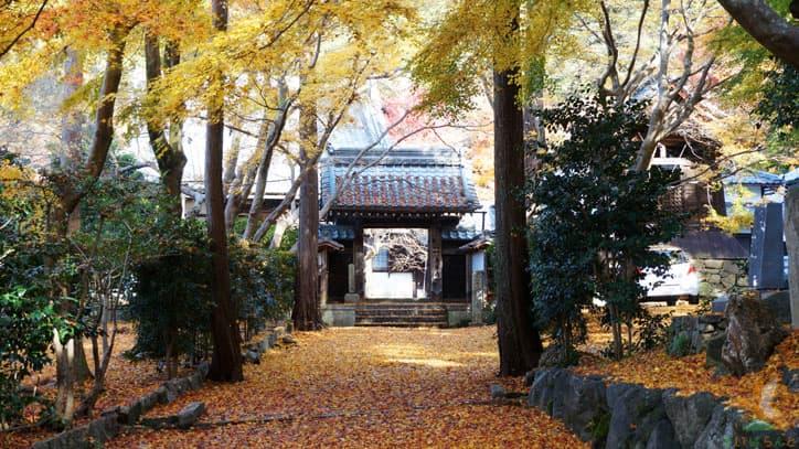秋の青岸寺