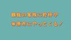 鶴瓶の家族に乾杯が滋賀県米原市にやってきた!醒井の特集が放送されました