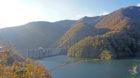 米原市の秘境の紅葉スポット「姉川ダム紅葉島」眺めも絶景!